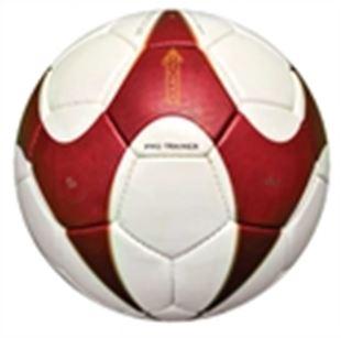 Bild für Kategorie Pro Trainer Fussball